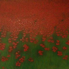 Big Poppy Field