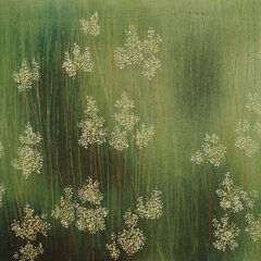 Meadowsweet Field